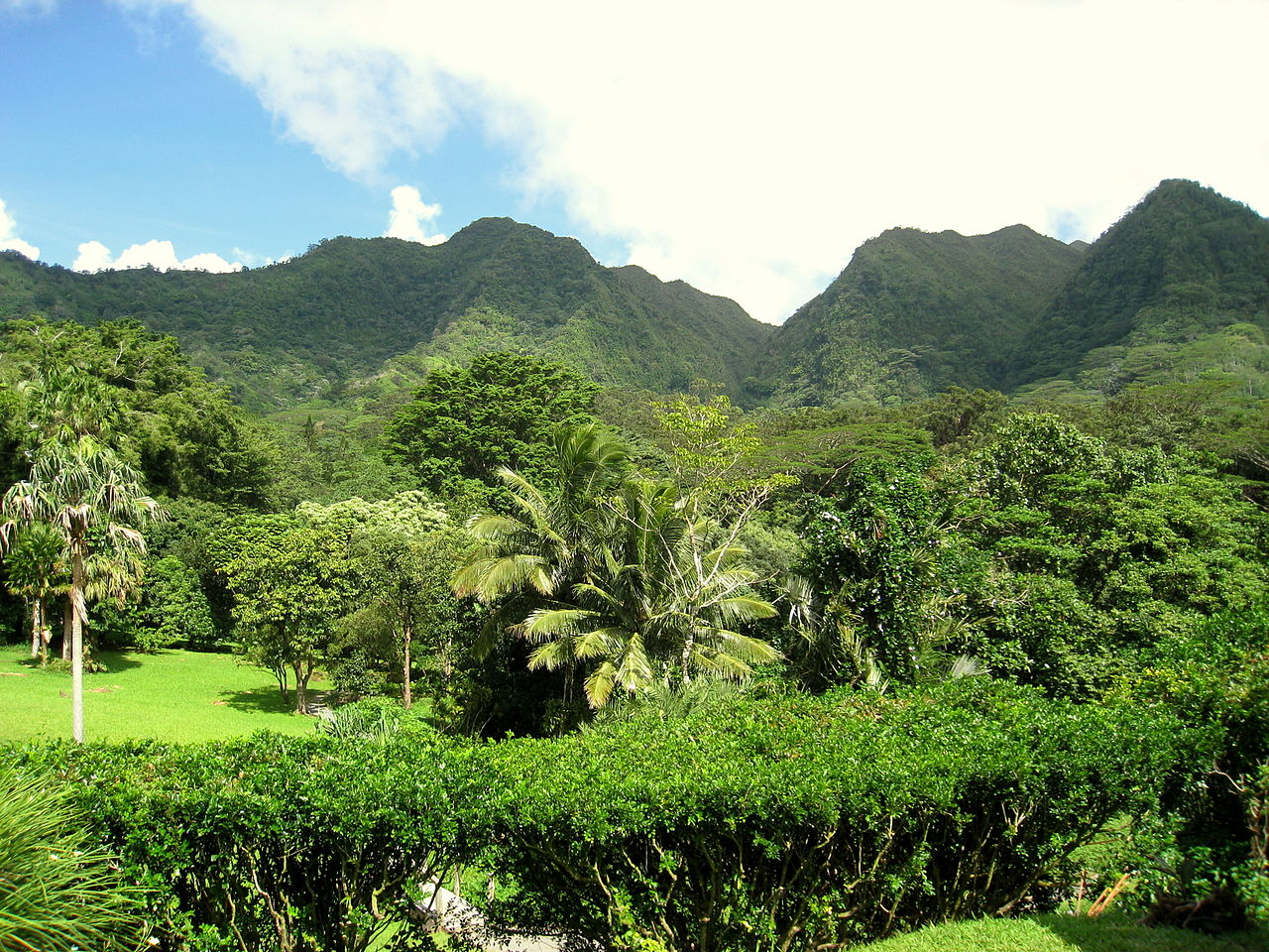1280px-Lyon_Arboretum,_Oahu,_Hawaii_-_general_view