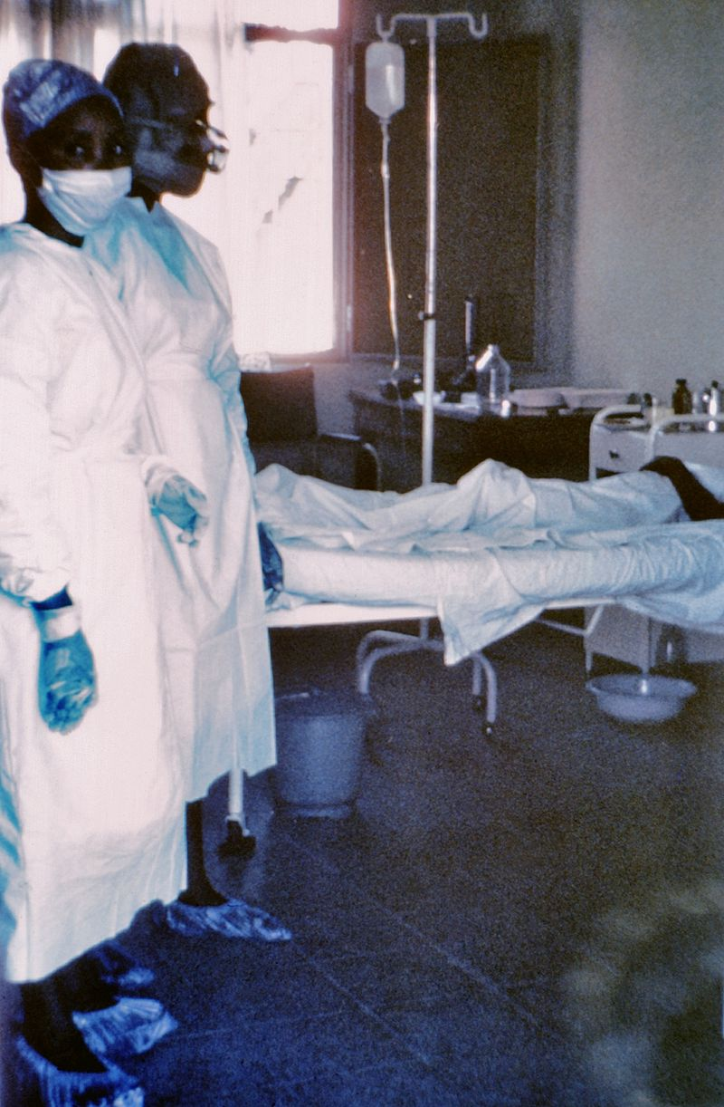 800px-7042_lores-Ebola-Zaire-CDC_Photo