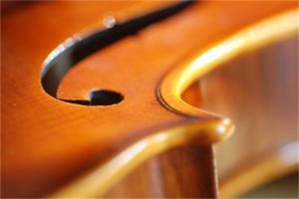 violin-super-closeup